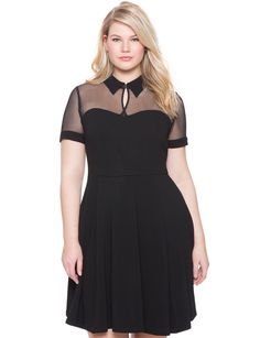 Studio Collared Fit and Flare Dress | Women's Plus Size Dresses | ELOQUII