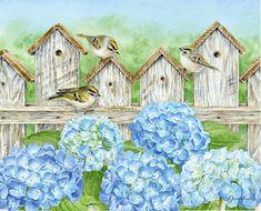Jane Shasky / Birds in the Garden / August 2016