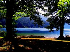 Crescent Lake, Washington Olympic National Forest.     One of my favorite places for its beauty and peace.