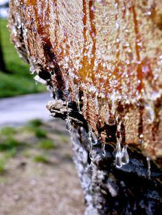 by Téuta's Inspirationen www.teutas-inspirationen.blogspot.com