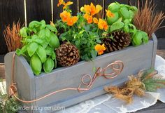 Give Thanks Centerpiece Box DIY - Give Thanks Centerpiece Box is a project you can build and enjoy.  Get the complete project at Garden Up green - The Home and…