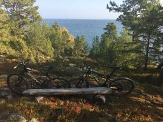 Riding along the sea in the northern parts of Stockholm Archipelago.