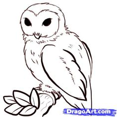 Simple Owl Drawings   How to Draw Owls, Step by Step, Birds, Animals, FREE Online Drawing ...
