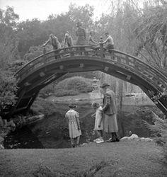 Japanese Garden 1930