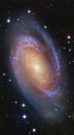 Space Galaxy Bright Spiral Galaxy One of the brightest galaxies in planet Earth's sky is similar in size to our Milky Way Galaxy: big, beautiful Image Credit: Subaru Telescope (NAOJ), Hubble Space Telescope; Nasa Hubble Images, Hubble Pictures, Galaxy Pictures, Galaxy Images, Telescope Pictures, Hubble Galaxies, Galaxies In Universe, Hubble Space Telescope, Space And Astronomy