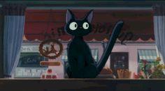 Jiji is Frustrated #kiki's delivery service #studio ghibli #miyazaki