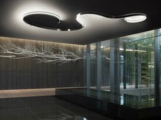 Beautiful Ceiling lights with cold white LED light