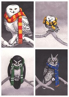 Harry Potter inspired: Set of 4 Prints (5x7) - Hogwarts House Owls. Gryffindor's Snowy Owl, Hufflepuff's Northern Saw-Whet Owl, Slytherin's Spectacled Owl, Ravenclaw's Great Horned Owl. Can purchase as set or individually!