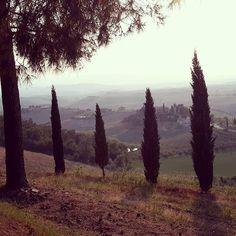 #italy #tuscany #tuscanygram #volterra #villamagna