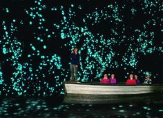 Waitomo Glowworm Caves | See More Pictures | #SeeMorePictures