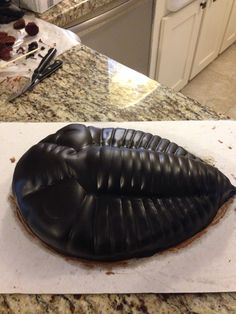 Trilobite cake