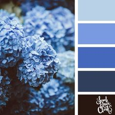 Blue color scheme | 25 color palettes inspired by the PANTONE color trend predictions for Spring 2018 – Use these color schemes as inspiration for your next colorful project! Check out more color schemes at www.sarahrenaeclark.com #color #colorpalette