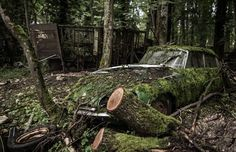 Check out these great images of 10 abandoned vehicles caught in time!