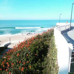 Sidewalk, Beach, Water, Outdoor, Santa Cruz, The Beach, Gripe Water, Outdoors, Side Walkway