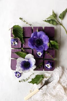 Wholesome vegan grain-free cashew cheesecake with beautiful green nettle and wild blueberry layers. Growing Blueberries, Wild Blueberries, Cashew Cheesecake, Hibiscus Tea, Hibiscus Flowers, 16 Bars, Create A Cake, Raw Cake, Square Cakes