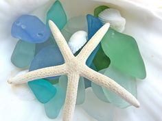 seaglass and starfish