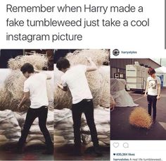"I find it funny that he captioned the picture ""Real life tumbleweed"" when in actuality, he made that tumbleweed"