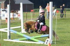 Tack Room Tips and Tricks - Tack & Bridle Facebook Art, Saddle Pads, Saddles, Horse Riding, Tack, Baby Strollers, Horses, Roping Saddles, Baby Prams