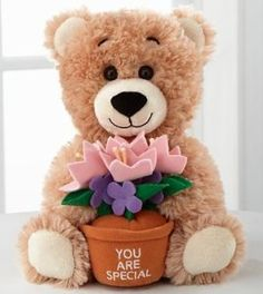 Toys:FTD Flowers Build-A-Bear-Workshop You're Special Bear