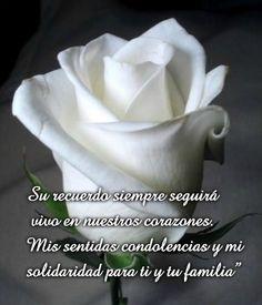 Rosas Blancas Con Frases De Amor Amor Love Frases Y Amor