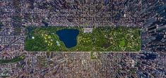 Amazing view of New York Central park from above