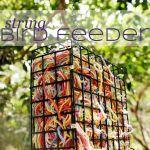 Be Outside Day 17 | DIY String Bird Feeder