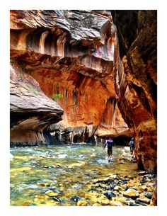 Zion National Park in Springdale, UT. Trail: Zion Narrows. Park was amazing, one of most beautiful places I have ever been. When we come back we will probably just stay in Springdale -a cute town, convenient walk to park/shuttles. Trails/areas to check out next time = Angel's Landing, The Subway, The Narrows.