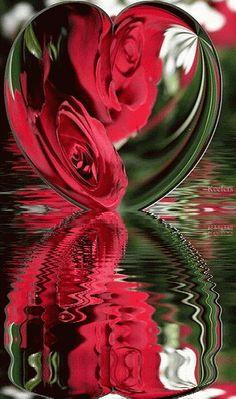 Gif reflections | ... reflections reflection animated hearts animated graphics animated gifs