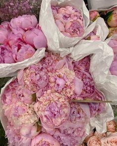 Flower Designs, Cabbage, Amethyst, Texture, Crystals, Vegetables, Flowers, Crafts, Spring
