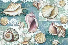Dekupaj için Çiçek Resimleri ,  #dekupajdesenlerikelebek #dekupajdesenlerimutfak #vintagedekupajkağıtları #yüksekçözünürlüklüdekupajdesenleri , Dekupaj için çiçek resimlerinden ve farklı resimlerden oluşan çok güzel bir galeri hazırladık. Ahşap boyamada , cam boyamada kullanılan ço... Decoupage Vintage, Decoupage Paper, Vintage Paper, Sea Illustration, Decoupage Printables, Seashell Painting, Nautical Art, Sea Theme, Fish Art