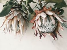 Dried Flowers Bouquet Wedding Gift For Bride From Groom Wedding Invitation Wording Couple Hosting Best Way To Dry Wedding Bouquet Protea Flower, Dried Flower Bouquet, Flower Bouquet Wedding, Fresh Flowers, Dried Flowers, Beautiful Flowers, Flower Poem, Flower Art, Wedding Gifts For Bride