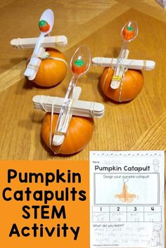 Pumpkin catapults STEM activity plus additional fun, hands-on pumpkin science experiments & parts of a pumpkin activities pumpkinscience pumpkincatapults scienceforkids stemeducation 394768723587231133 4th Grade Science, Stem Science, Kindergarten Science, Science Lessons, Teaching Science, Science For Kids, 3rd Grade Science Experiments, Experiments Kids, Science Videos