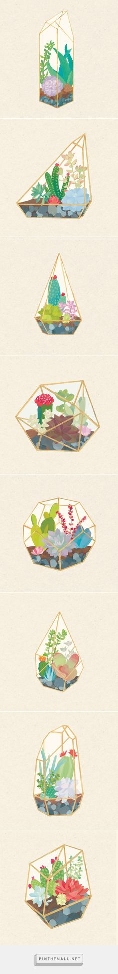 sweetmans: terrarium collection all together :) - created via https://pinthemall.net