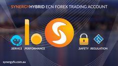 Synergy FX Hybrid ECN Account | Designer Muriel Rebora