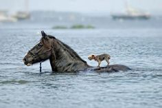 We all need to help each other...