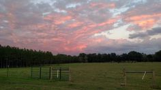 Sunset on the farm eastern view