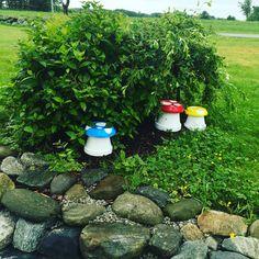 Easy Garden, Garden Projects, Stepping Stones, Rustic, Outdoor Decor, Home Decor, Homemade Home Decor, Retro, Farmhouse Style