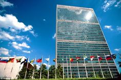 'The real agenda is concentrated political authority,' Newman wrote, referring to the UN's...