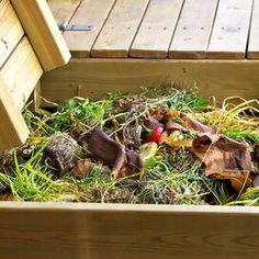 barrenwort Outdoor Compost Bin, Best Compost Bin, Kitchen Compost Bin, Rose Plant Care, Rose Care, Best Perennials, Flowers Perennials, Tumbling Composter, Perennial Geranium