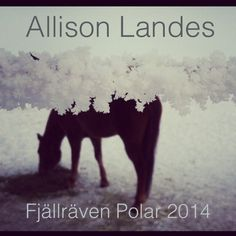 I am a silly gal trying to get a spot on a dogsledding trek through the Arctic Circle. Pretty pretty please give me a few clicks and vote for me?? More pretty pictures and voting here: http://www.fjallravenpolar.com/polar-2014/show-all-contributions/?uid=234252 Thaaaaaaaank youuuu!
