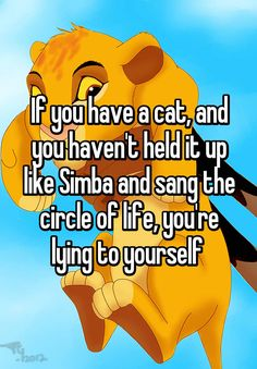 """If you have a cat, and you haven't held it up like Simba and sang the circle of life, you're lying to yourself """