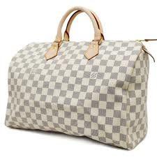 Louis Vuitton Silver and White Speedy Bag