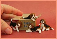 Box of Puppies! Sculpted in polymer then flocked with fibers. Amazing Work!
