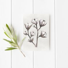 Watercolor Cotton Printable Stationary Greeting Card