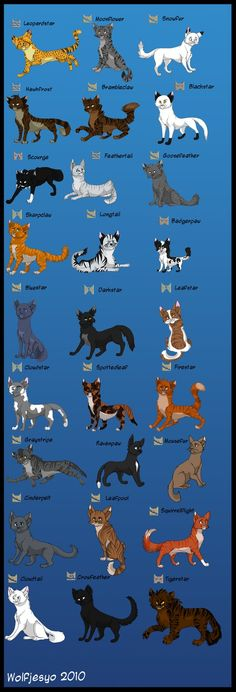 WARRIORS I love them all except.... TIGERSTAR: he killed RedTail.... And then BlueStar!! He is down right EVIL! No offense if u like him and I don't like a few others