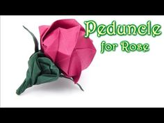 Origami Peduncle for Kawasaki Rose - Yakomoga Origami tutorial. This origami video I will show you how to make fold paper fantastic, cool origami Peduncle for Kawasaki Rose How to make best cool origami Peduncle for Kawasaki Rose Wie man Origami Diy Origami Box, Origami And Kirigami, Origami Rose, How To Make Origami, Modular Origami, Origami Folding, Paper Crafts Origami, Oragami, Paper Folding
