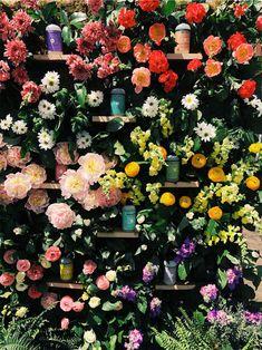 Floral Wreath, Wreaths, Posts, The Originals, Home Decor, Flower Crowns, Messages, Door Wreaths, Deco Mesh Wreaths