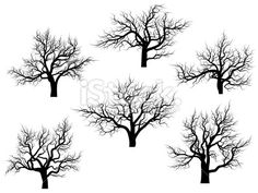 Printable Trees with No Leaves | Silhouettes of oak trees without leaves. Royalty Free Stock Vector Art ...