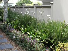 Need some low maintenance garden design ideas? Learn the fundamentals and tips to creating the perfect low mainteance outdoor space in our feature article. Garden Ideas Nz, Garden Inspiration, Low Maintenance Garden Design, Narrow Garden, Front Yard Design, Coastal Gardens, D House, Garden Cottage, Farmhouse Garden