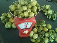 Hi Everyone, Last week my mum and I made some yummy Green Tomato Chutney so I thought I would share the recipe with you and some tips on ho. Tomato Chutney, How To Make Greens, Green Tomatoes, Food Food, Red Hair, Bliss, Posts, Fruit, Recipes
